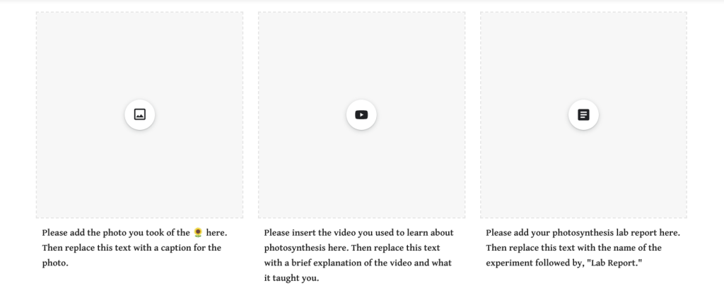 Screen capture of image, YouTube, and Google Docs placeholders on a Google Site.